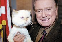 Celebrities and their Cats / Celebrities+Cats