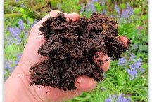 Composting / Composting tips & tricks