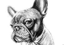 Art French Bulldog