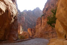 Petra / Petra was an amazing place to visit