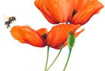 botanical art_watercolor