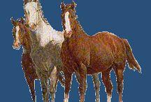 Gen. horses
