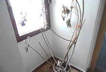 Ε331  http://www.estiahome.gr/estatesite10/property_details.jsp?proposalId=0&propertyId=2182315