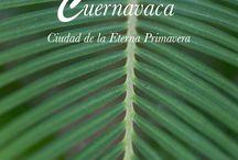 Wedding venue: Cuernavaca Camino Real Sumiya