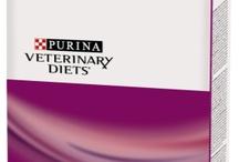 Veterinary Cat Foods