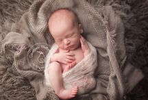 Newborn photos / by Leah Belazarian