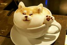 Coffee and cream, love, love, love