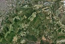 Digivisk landscape