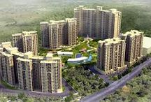 Property Buying Tips in Delhi NCR