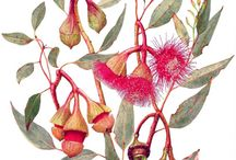 BOTANICAL ART / This is a collaborative board to share beautiful pins on botanical art - please comment on one of the pins below and you will be added to the group so you can add your own inspiration!