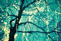 lights lights and more lights / by Aprajita Verma