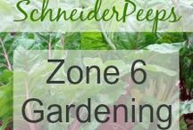 Zone 6 Gardening / zone 6 gardening group board