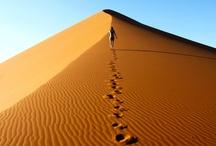 Sivatagok, desert