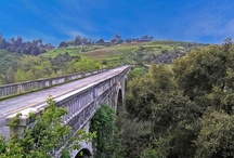 Bonsall - San Diego CA / Get the latest updates on News, Events, Real Estate, Home Values and more on our Locals Network. Join today at SDConnection.com
