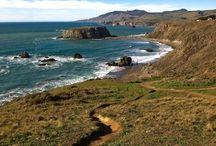 Travel: Sea Ranch