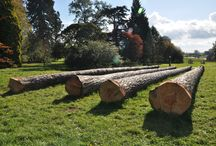 Westonbirt arboretum tree management centre / We're involved in creating the new tree management centre at Westonbirt, this started with a hewing course...
