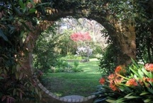 Gardens and Outdoors