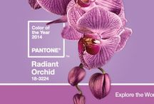 Pantone Color 2014 / All things Radiant Orchid, Color of the year 2014