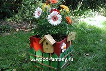 Garden and ideas for garden