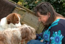 Blogs Heartmessages / My blogs, all about what moves me, news about animals, animal communication, healing and fun :-)