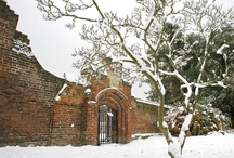 Fulham Palace in Winter / Fulham Palace in the snow #winterweddings