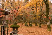 Fukouka scenery