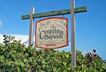 Coqina Key Beach - Florida Destination Weddings / Coquina Key Beach in Sarasota County permits and great beach. (727) 475-2272