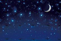 coccole di stelle