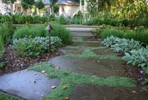 Outdoor Landscaping / by Neely Baggett