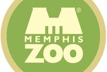 Going to Memphis / by Courtney Osters