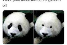 Ma glasses