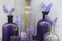 Bottles~~and~~Jars / by Janice Wyatt-Pannell