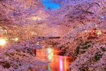 Beatiful places