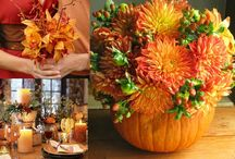 Fall/Spring Holiday Ideas / by Janet MacDonald
