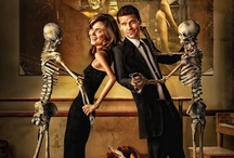 TV SHOWS: BONES / Bloopers, interviews, comic con panels, fan art, quotes and more.
