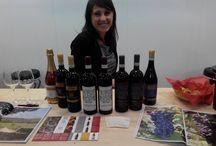 Wine Fairs / Wine fairs and wine tasting around the World