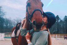 miei cavalli