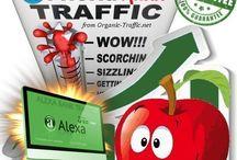 Traffic Mix SEO / Ranking