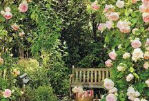 Enchanting gardens / Escape to beautiful gardens perfect relaxing, reading, meditating and tea parties
