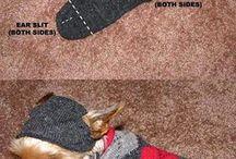 dog sewing