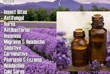 Essential Oil Uses / Ideas and tips for using essential oils.