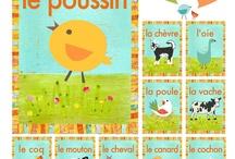francés clases