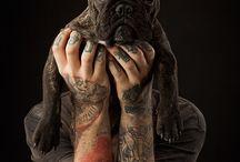 tattoo portraits at Cooper Studio
