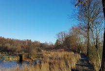 Winter / Zalig, een koud winterzonnetje op je snoet, de laarzen aan en genieten van de mooie natuur