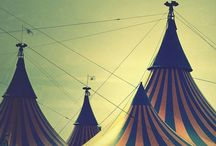 Cirque / by Tamra Alexander Cook / The Gilded Barn