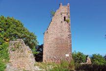 Les sites touristiques en Alsace / Châteaux, musées, jardins, parcs animaliers, parcs d'attractions... Impossible de s'ennuyer en Alsace !