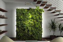 Växtinstallation