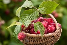 ... berry