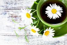 liečivé rastlinky , bylinky