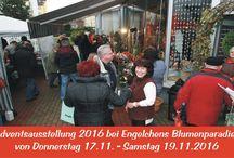 Adventsausstellung 2016 / Wir präsentieren Ihnen liebevoll gestaltete Adventsfloristik in unserem Blumenfachgeschäft in Ludwigshafen-Edigheim, In der Wolfsgrube am Giselherplatz 7.  Donnerstag, den 17.11.2016 9:00 Uhr - 12:00 Uhr u. 14:30 Uhr - 18:00 Uhr  Freitag, den 18.11.2016 9:00 Uhr - 12:00 Uhr u. 14:30 Uhr - 18:00 Uhr  Samstag, den 19.11.2016 8:00 Uhr - 18:00 Uhr